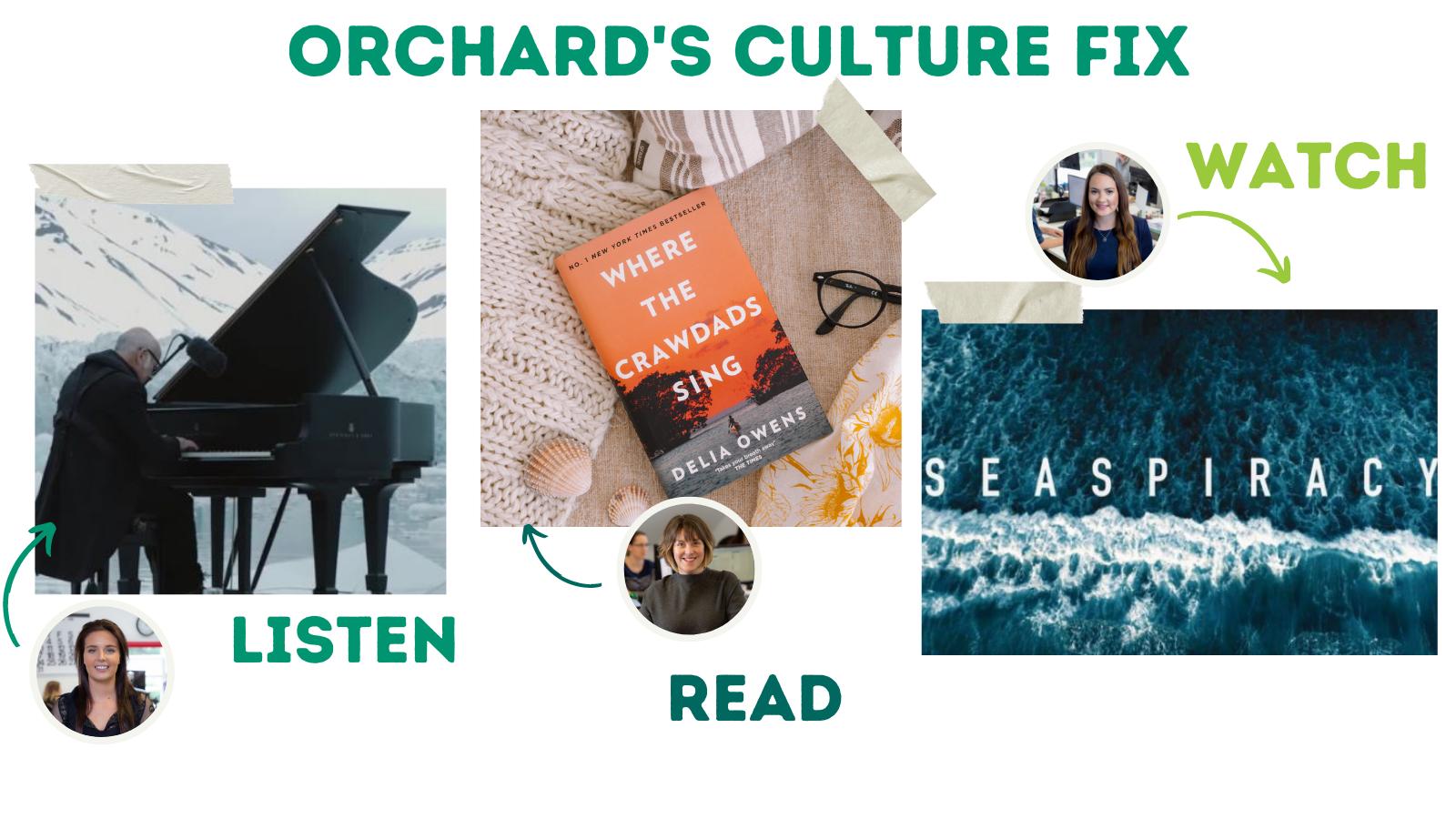 Orchard's culture fix #4